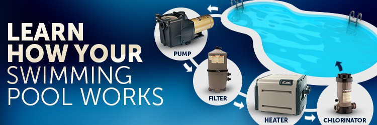 Learn How Your Pool Works