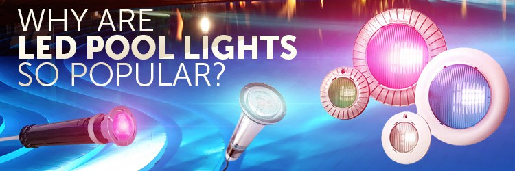 Why are led pool lights popular?