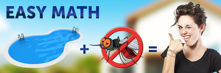 How to rid your pool of pests