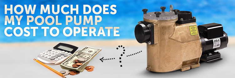 How Much Does My Pool Pump Cost To Run Inyopools Com