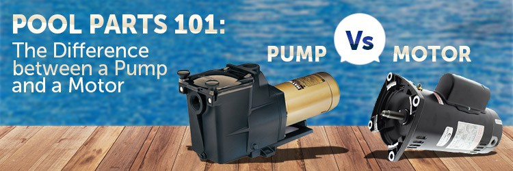 Pool Pump or Pool Motor?