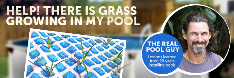 Help There Is Grass Growing In My Pool Inyopools Com