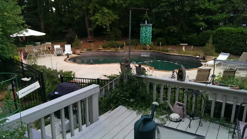 Peachtree City GA Swimmining Pool