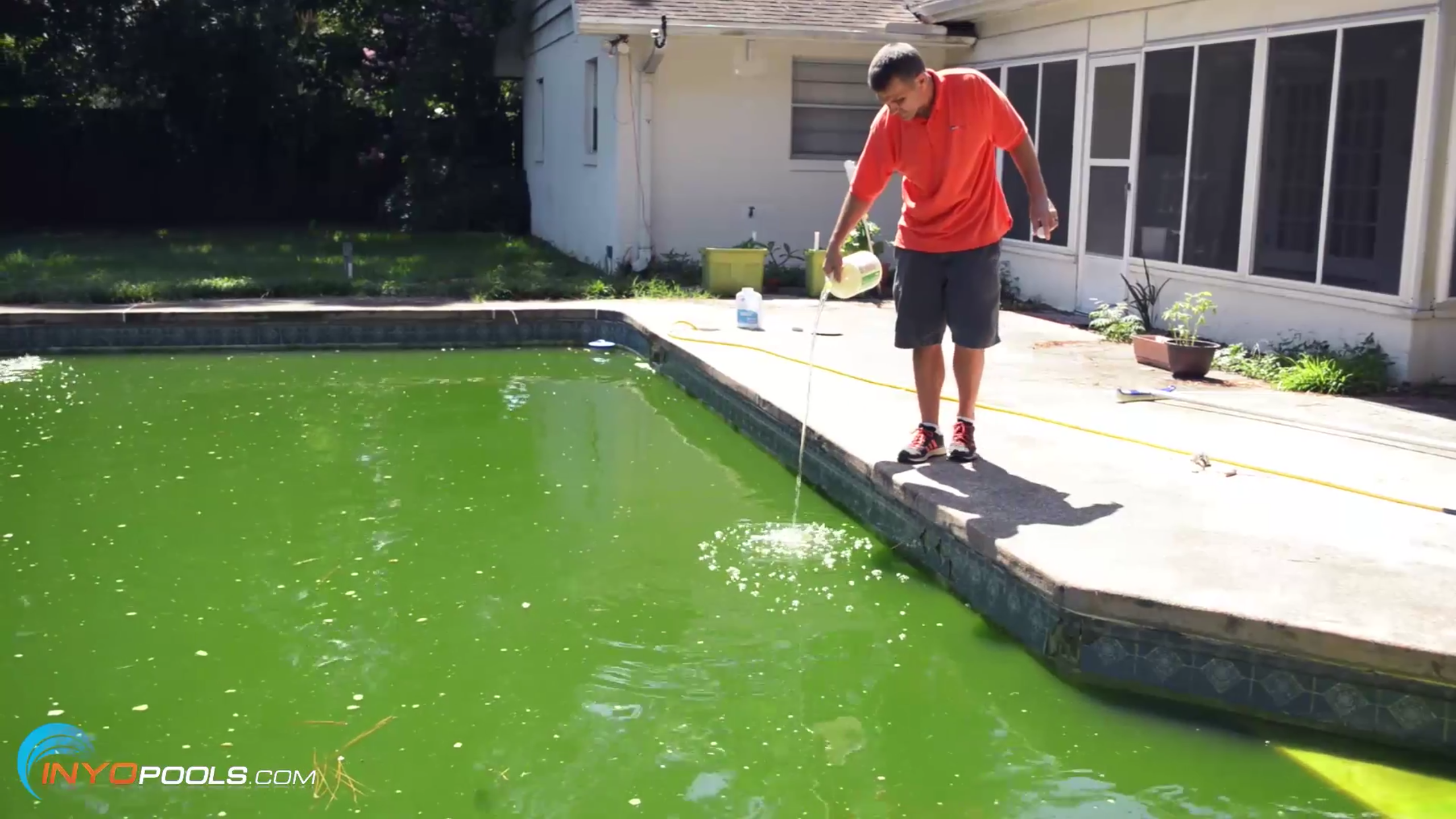 How to clean a green pool - Chlorine calculator for swimming pools ...