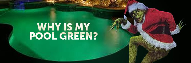 750x250_why-is-my-pool-green