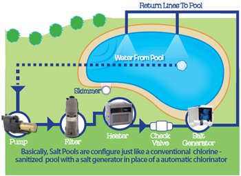 The Journey Of Swimming Pool Water