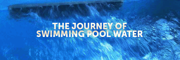 The Journey Of Swimming Pool Water Inyopools Com