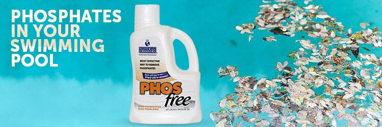 Phosphates in your swimming pool and how to remove it for Swimming pool treatment options