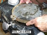 Blog Image - Pump Lid and O-ring (200 x 200)