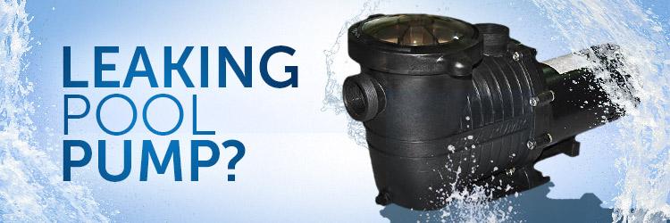 Leaking Pool Pump – INYOPools.com – DIY Resources