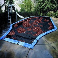 Blog Image - Pool Cover Leaves