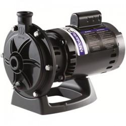 Polaris 3/4HP Booster Pump