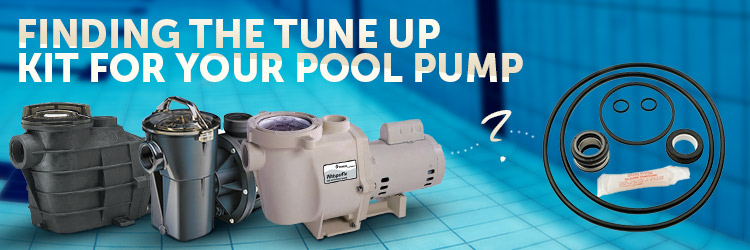 Pool Pump Tune Up Kit