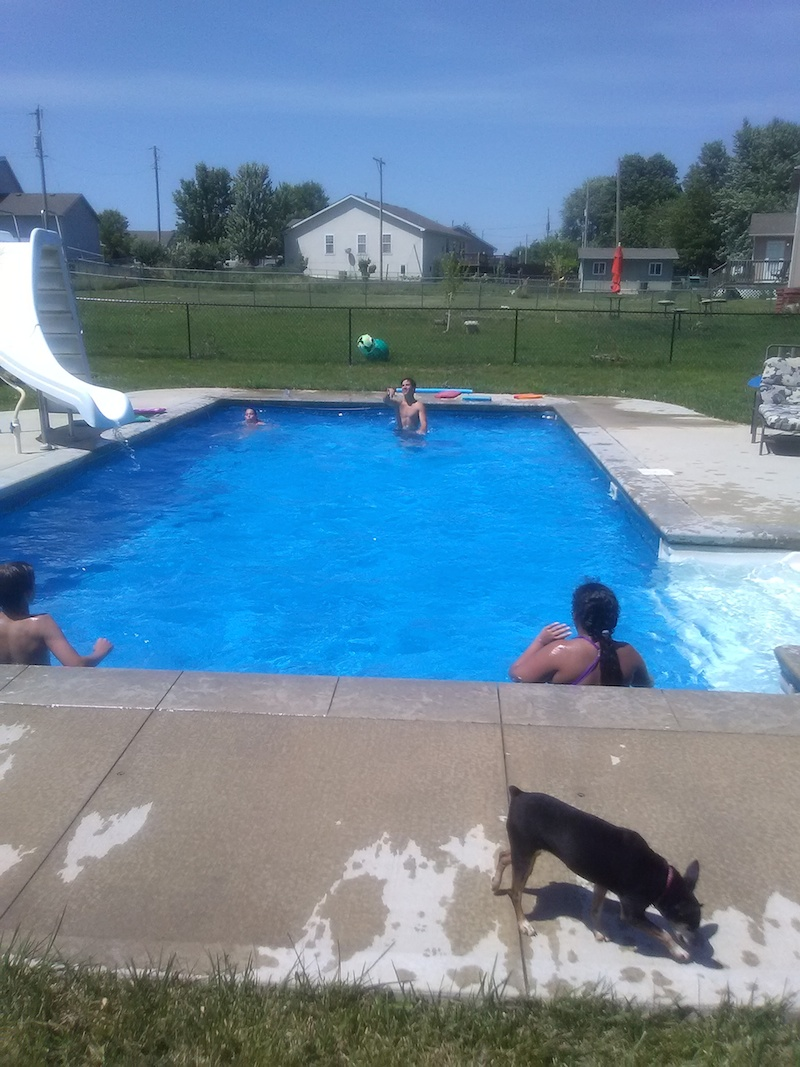Tonganoxie KS Swimming Pool