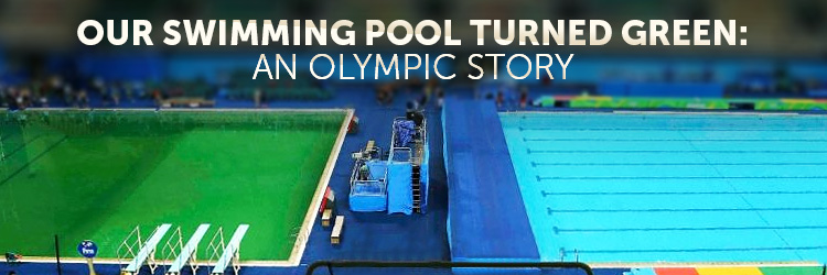 why did the olympic diving pool turn greenwhy did my pool turn green?